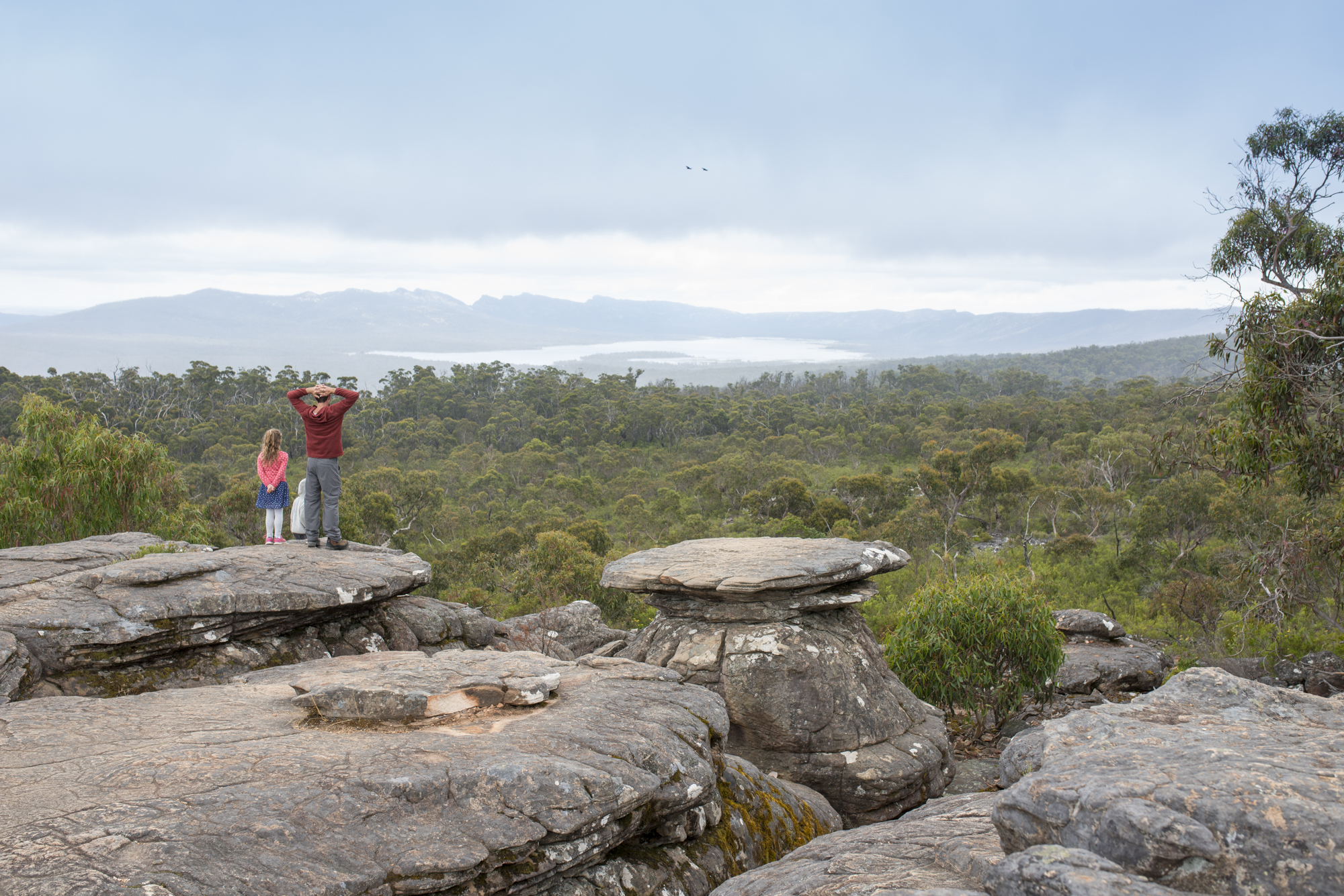 I took this photo while on a walk to The Balconies in the Grampians over our New Years travel. I love the symbolisation of endless possibility. Looking forward. Being open to new opportunities. Moving forward together. And hey, step into the unknown - leap with faith and you will find your feet. Rocky roads lead to green pastures (or in this case, trees).