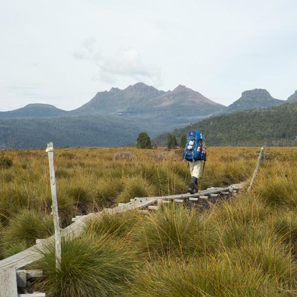 Tasmania2013-2933.jpg