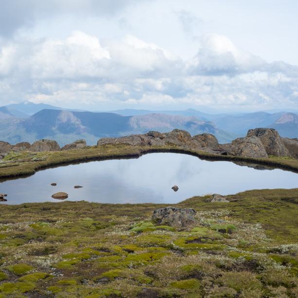 Tasmania2013-3069.jpg