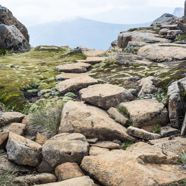 Tasmania2013-3076.jpg