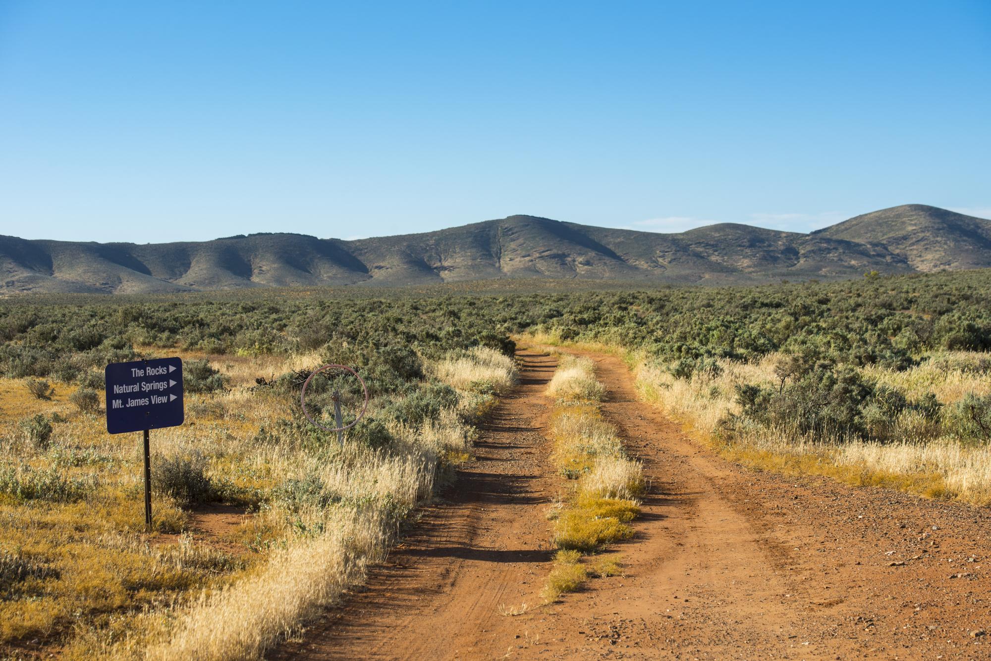FlindersRanges011116-268.jpg