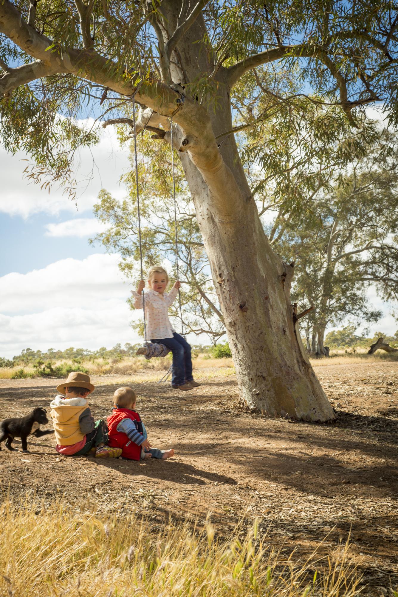 FlindersRanges011116-372.jpg
