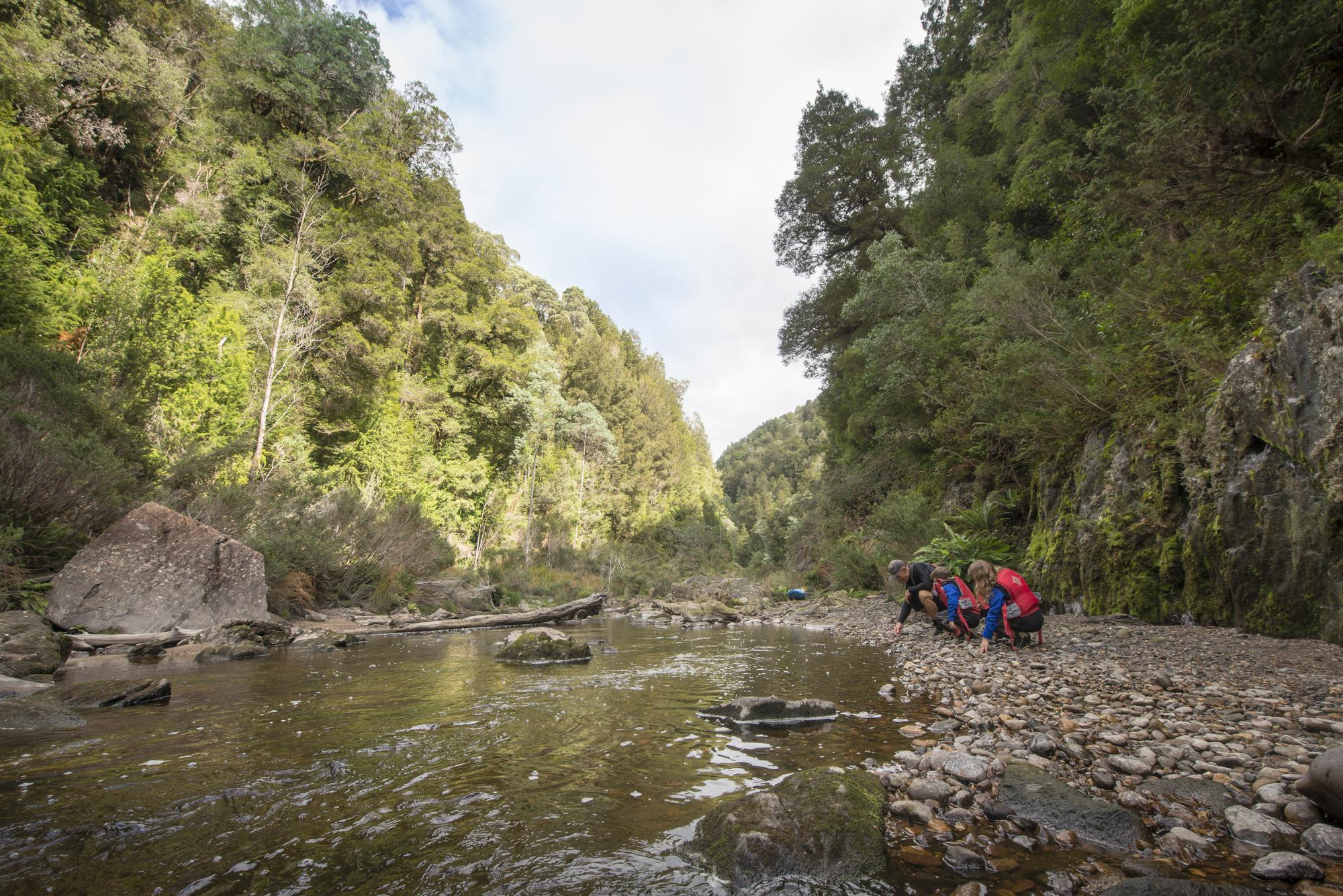 Tasmania0317-106.jpg
