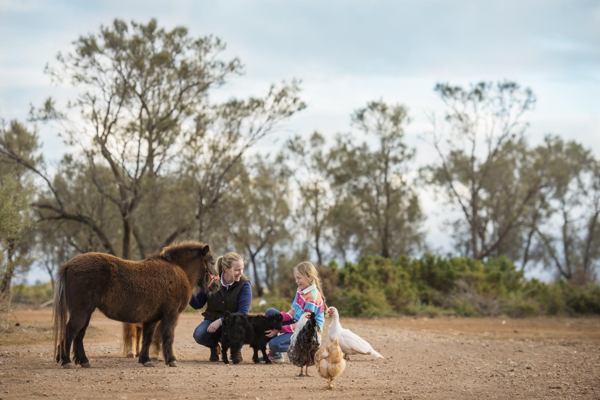 Image for Flinders Bush Retreats on previous tour.