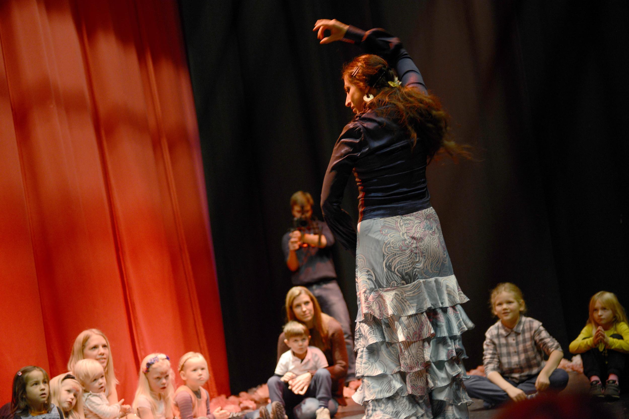 Flamenco_ARU0483 (1).JPG