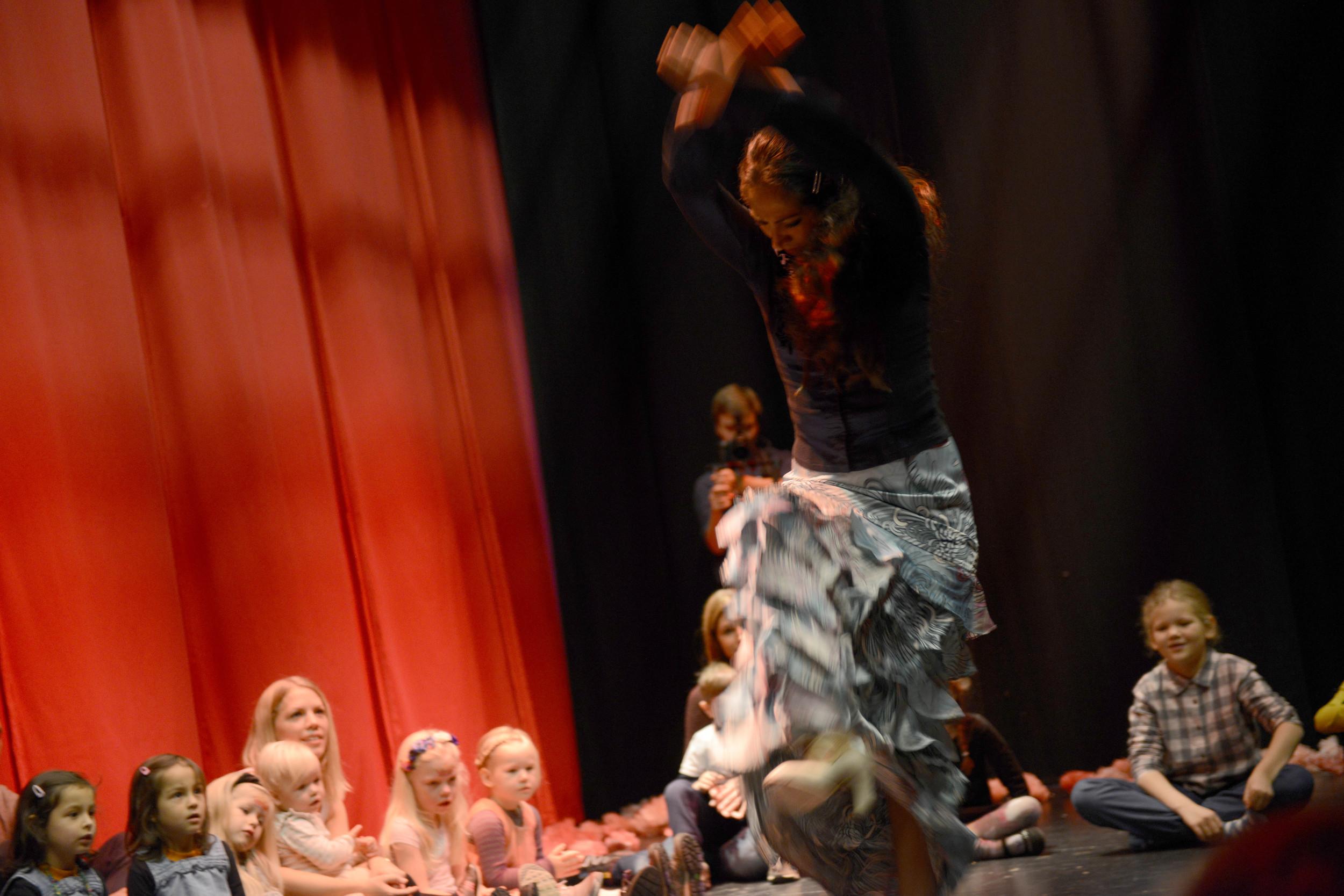 Flamenco_ARU0483 (11).JPG