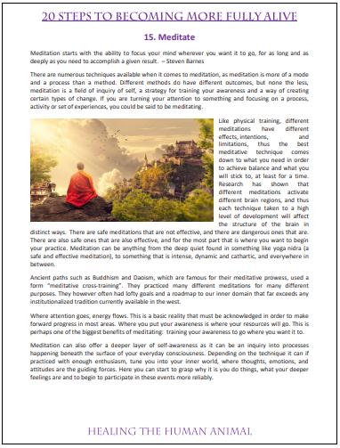 Meditate - 20 steps.PNG