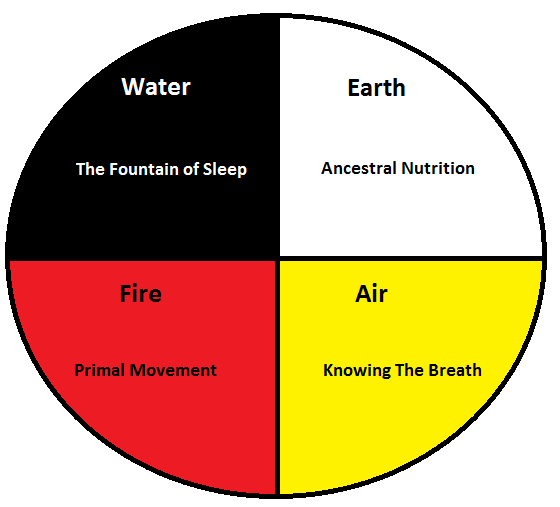 An OLD, much less refined version of Healing The Human Animal - I am currently NOT working with the Native American Medicine Wheel.
