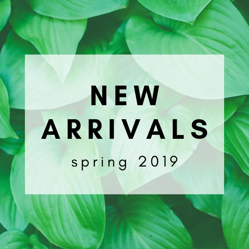 New arrivals (1).png