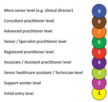 Skills for Health careers framework