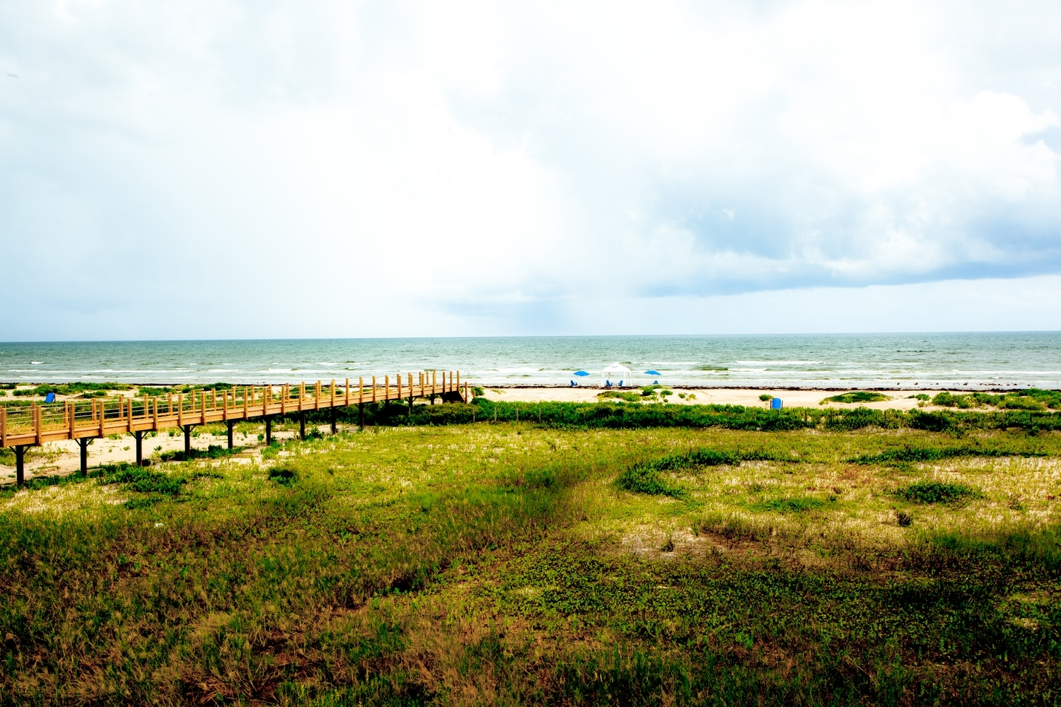 Make a discovery on the texas gulf coast.