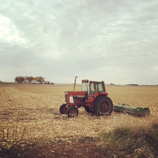 post harvest field.jpg