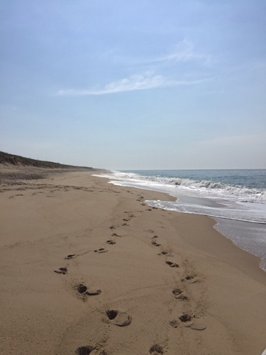 Footsteps in the sand.  South Beach on Martha's Vineyard, Massachusetts.