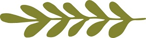 Olive Branches Small Olive Green_Solid Sprig 8_300.jpg