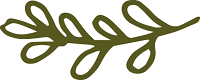 Olive Branches Small Army Green_Outlined Sprig 6_smaller.png
