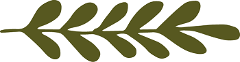 Olive Branches Small Army Green_Solid Sprig 8_350.png