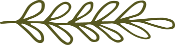 Olive Branches Small Army Green_Outlined Sprig 8_350.png