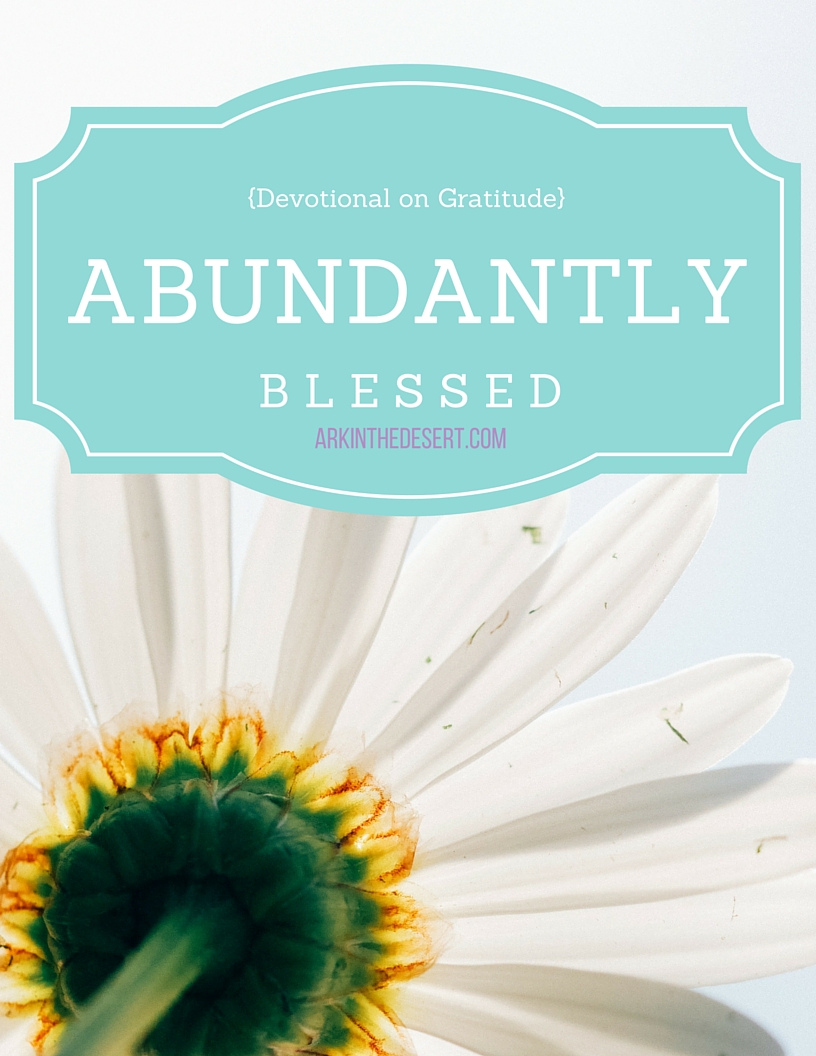 Abundantly Blessed, a 7 day devotional to help you see yourself as blessed. Explore different aspects of God to further understand who you are in Him.
