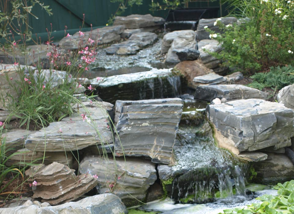 pond13aug09 copy.jpg