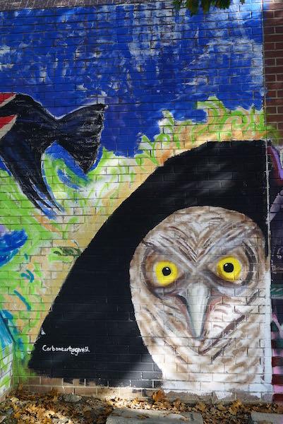 photo taken at the street art mural jam on 21st st in sacramento.