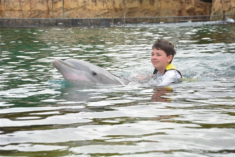 Although he was hesitant to touch the dolphin, my son overcame his fear and was able to interact with her.