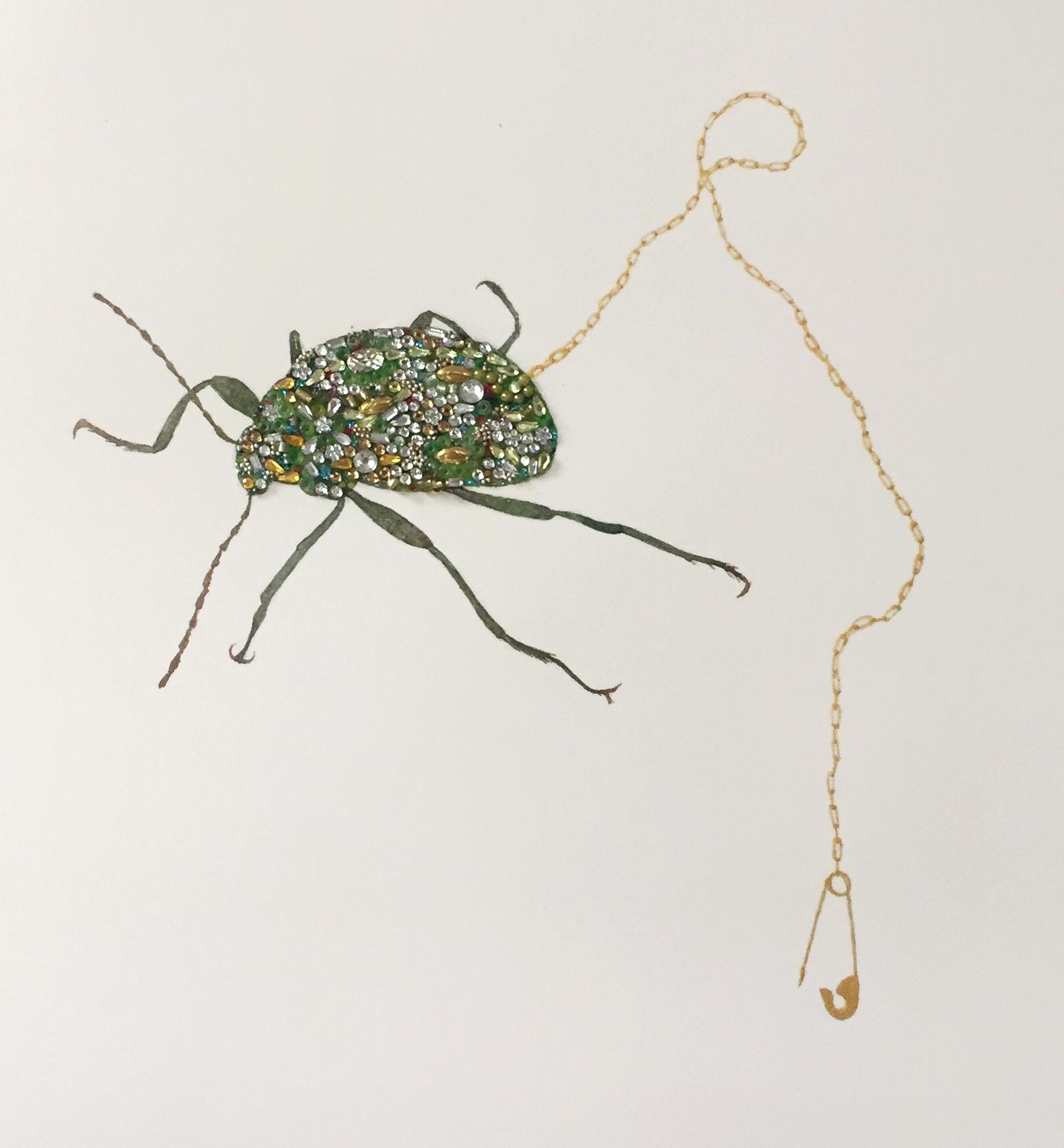 makech beetle