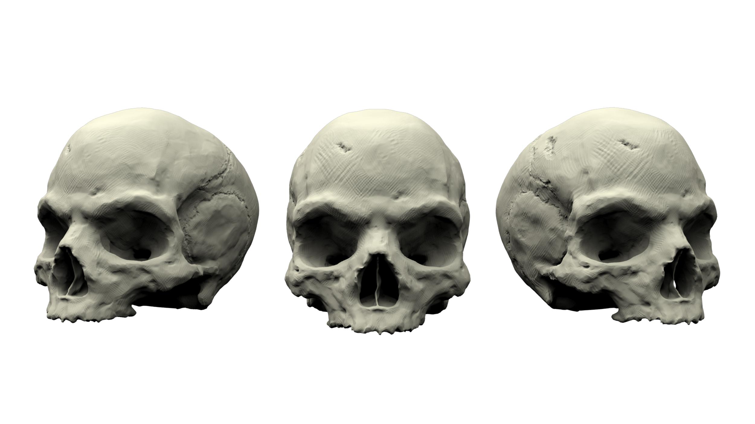 Skull_v001.png