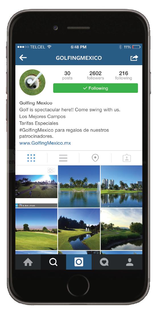 golfmex insta.png