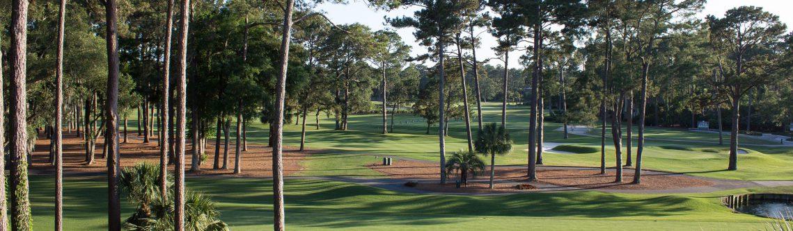 golf-course-1420945_1920-1139x333.jpg