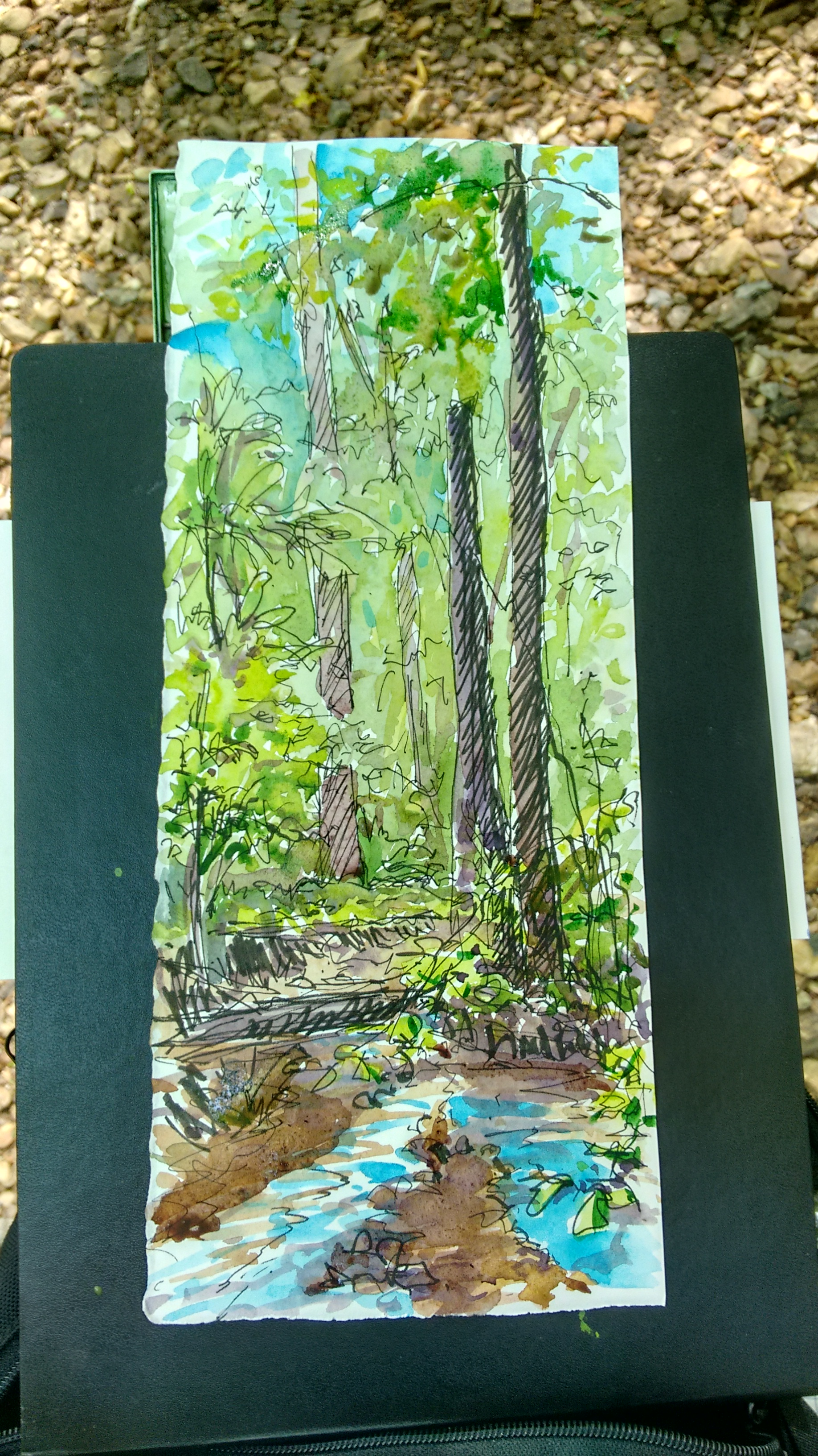 Quick Spring sketch! (Knox Woods- Woodstock, GA)