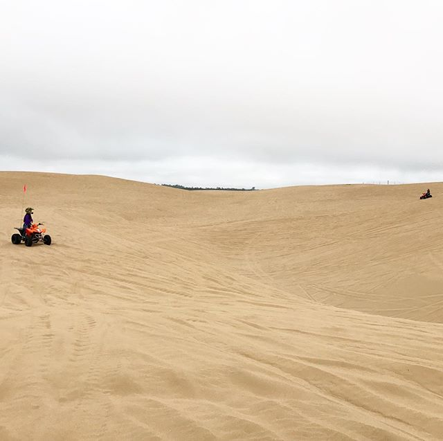 By far the scariest recreational activity I have ever tried in my life 😂🙀🆘🏍 #ATV #dunebuggy #pismobeach