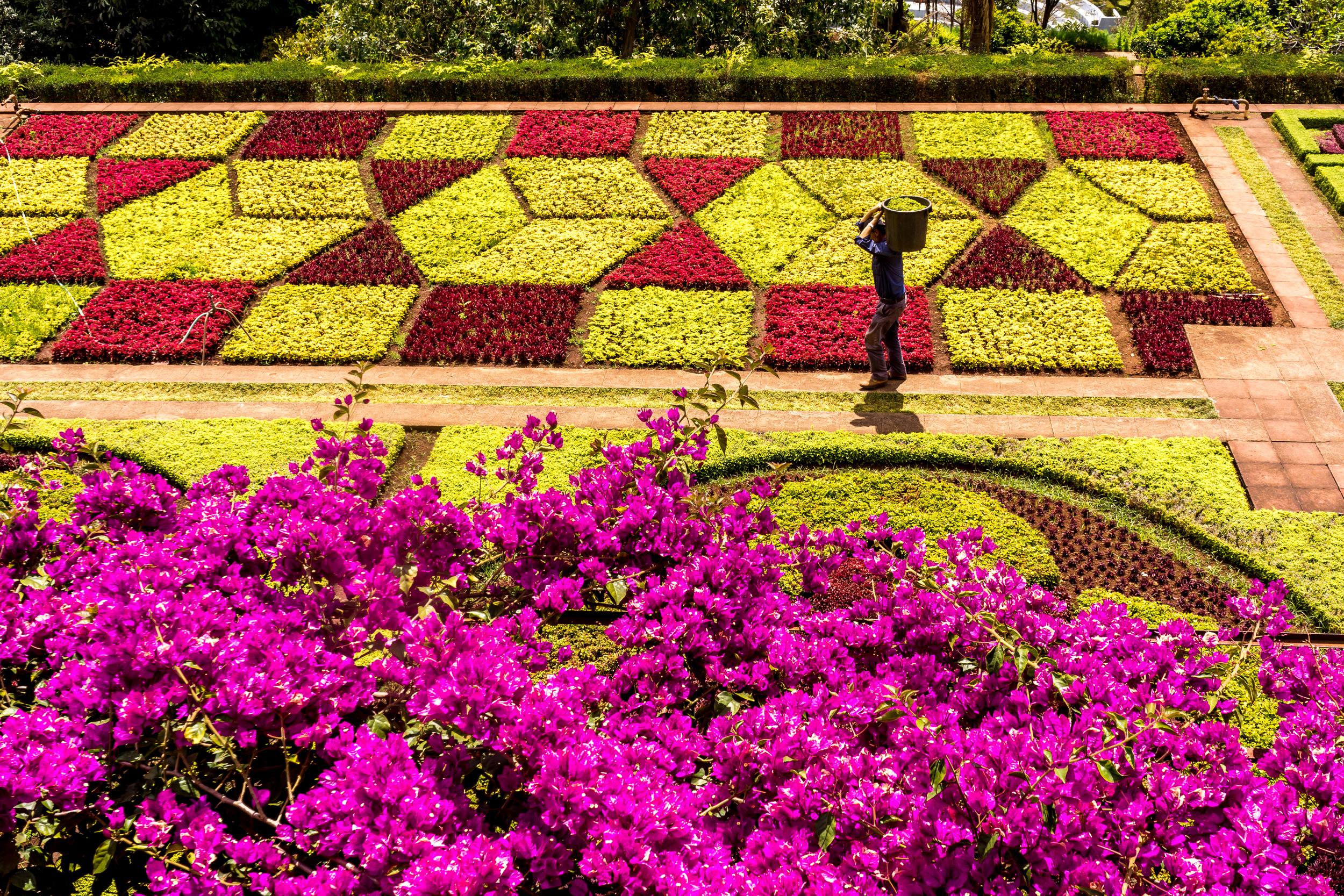 Worker, botanical garden.