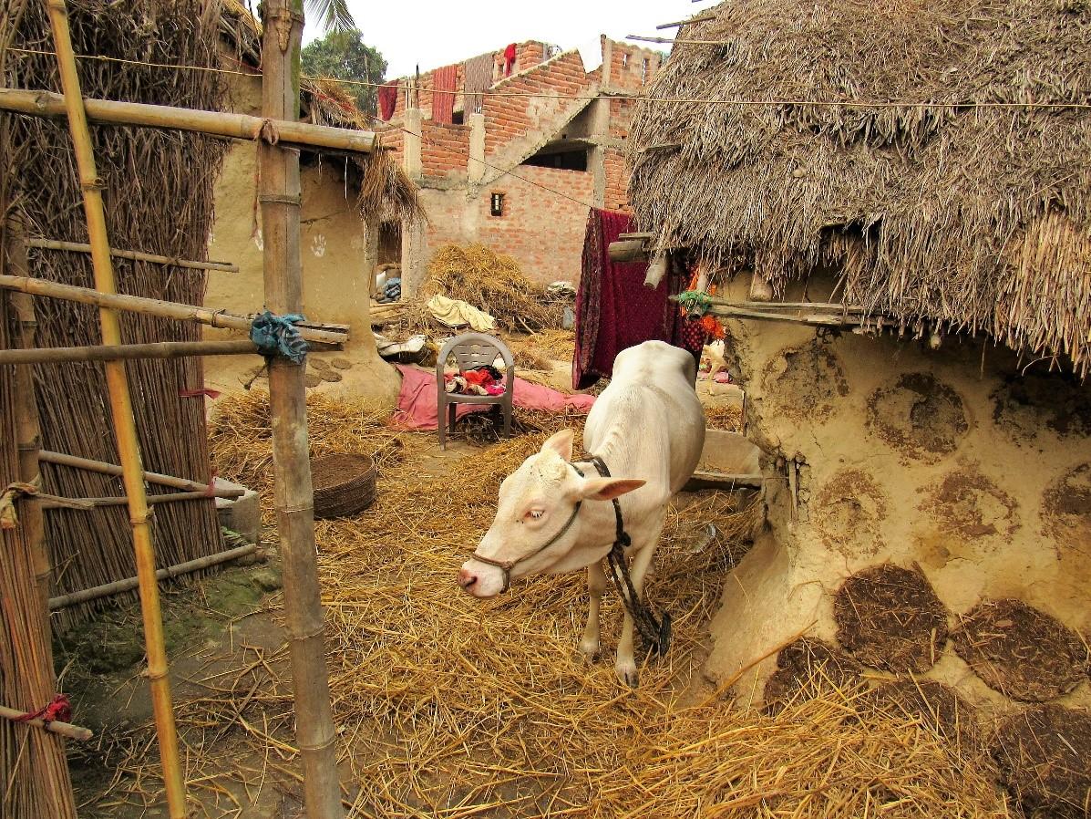 Patna, Northern India