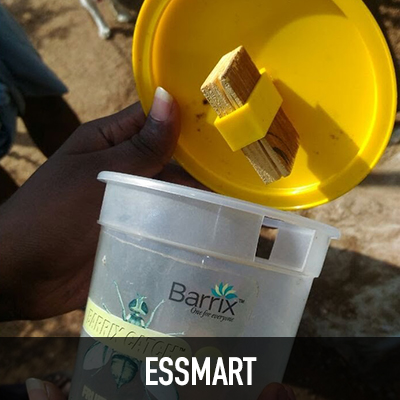 GIF_Enterprise_Thumb_Essmart.jpg