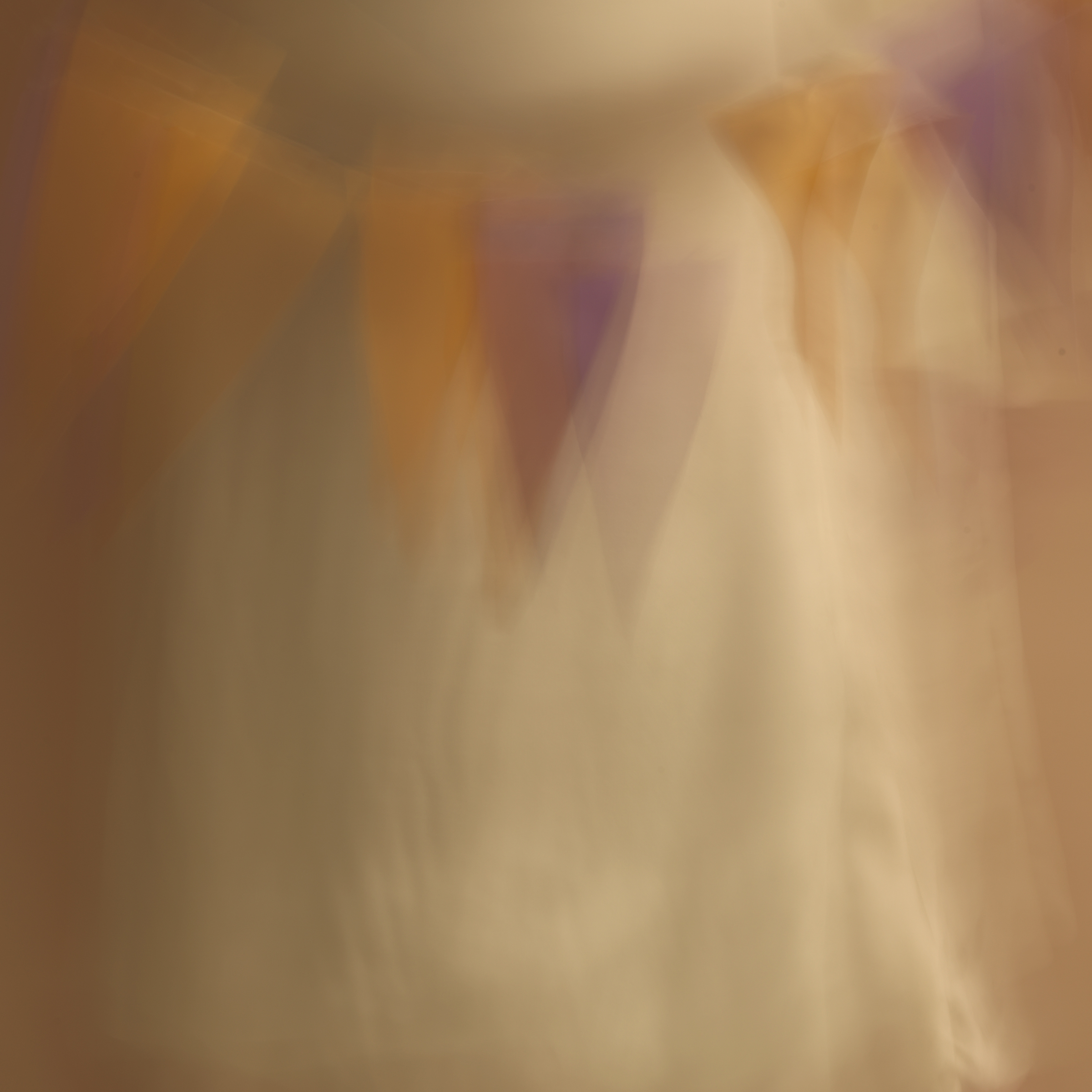 poet's pen, 12, 2014  20 x 20 in. Archival pigment print on Canson paper Edition of 5