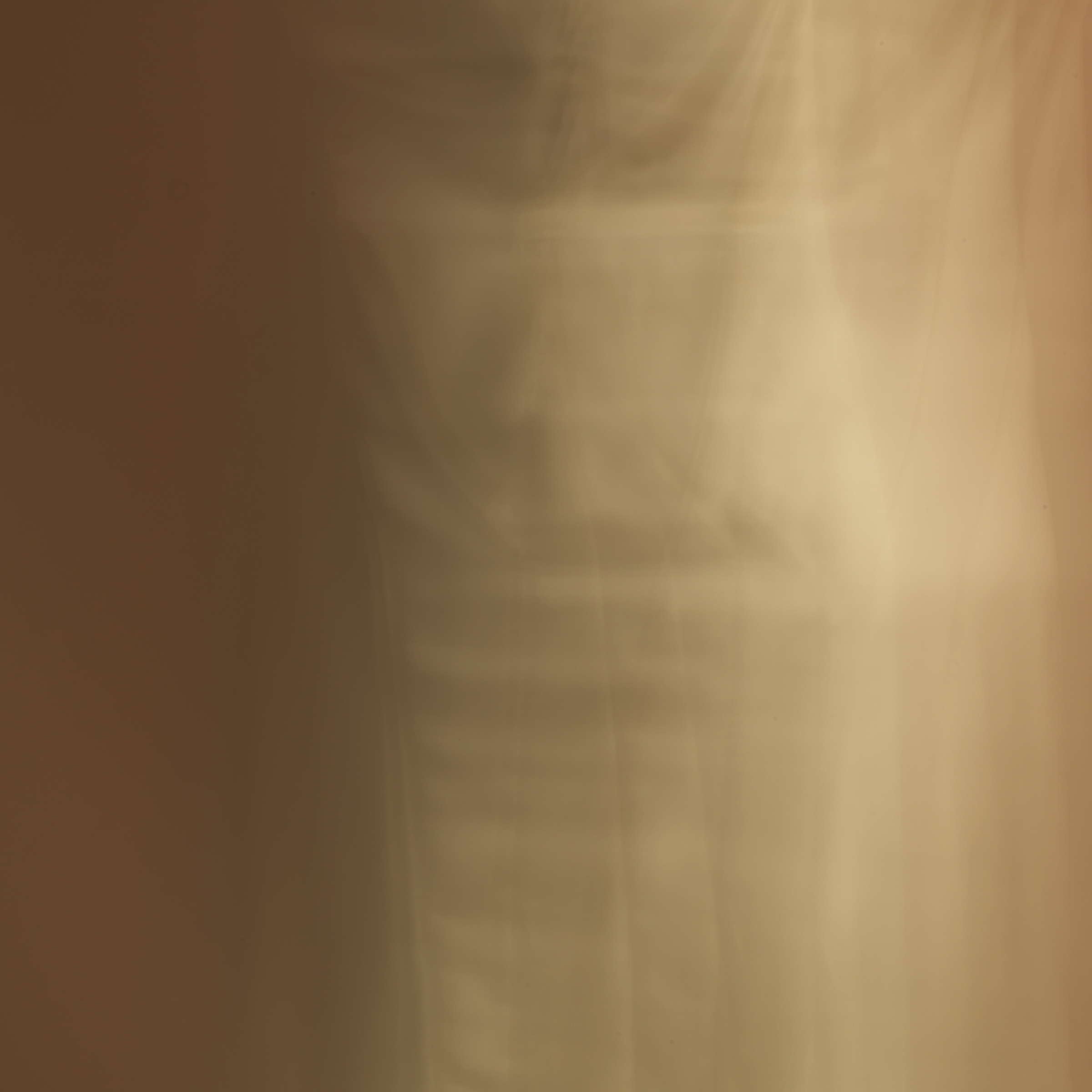 poet's pen, 5, 2014  20 x 20 in. Archival pigment print on Canson paper Edition of 5