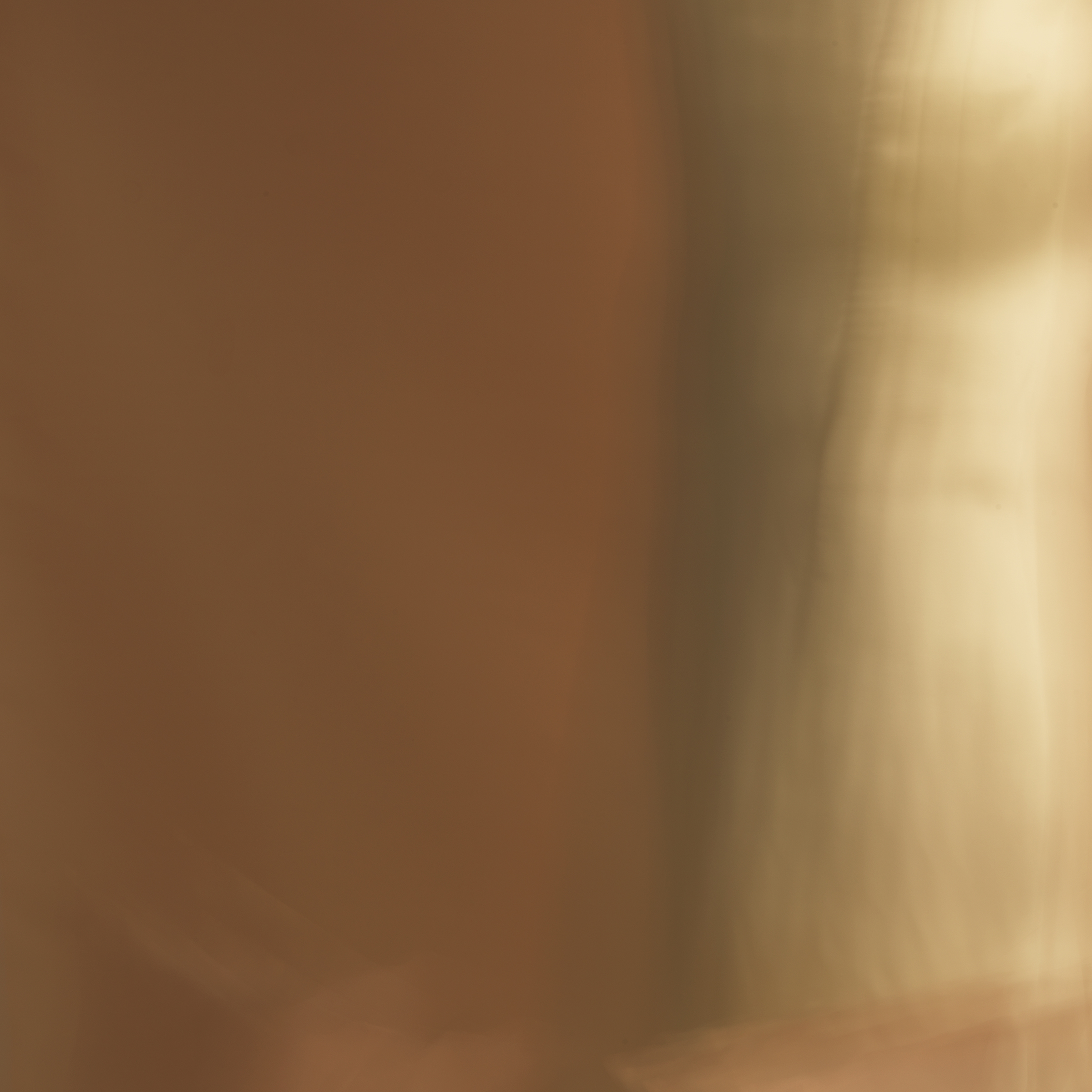 poet's pen, 6, 2014  20 x 20 in. Archival pigment print on Canson paper Edition of 5