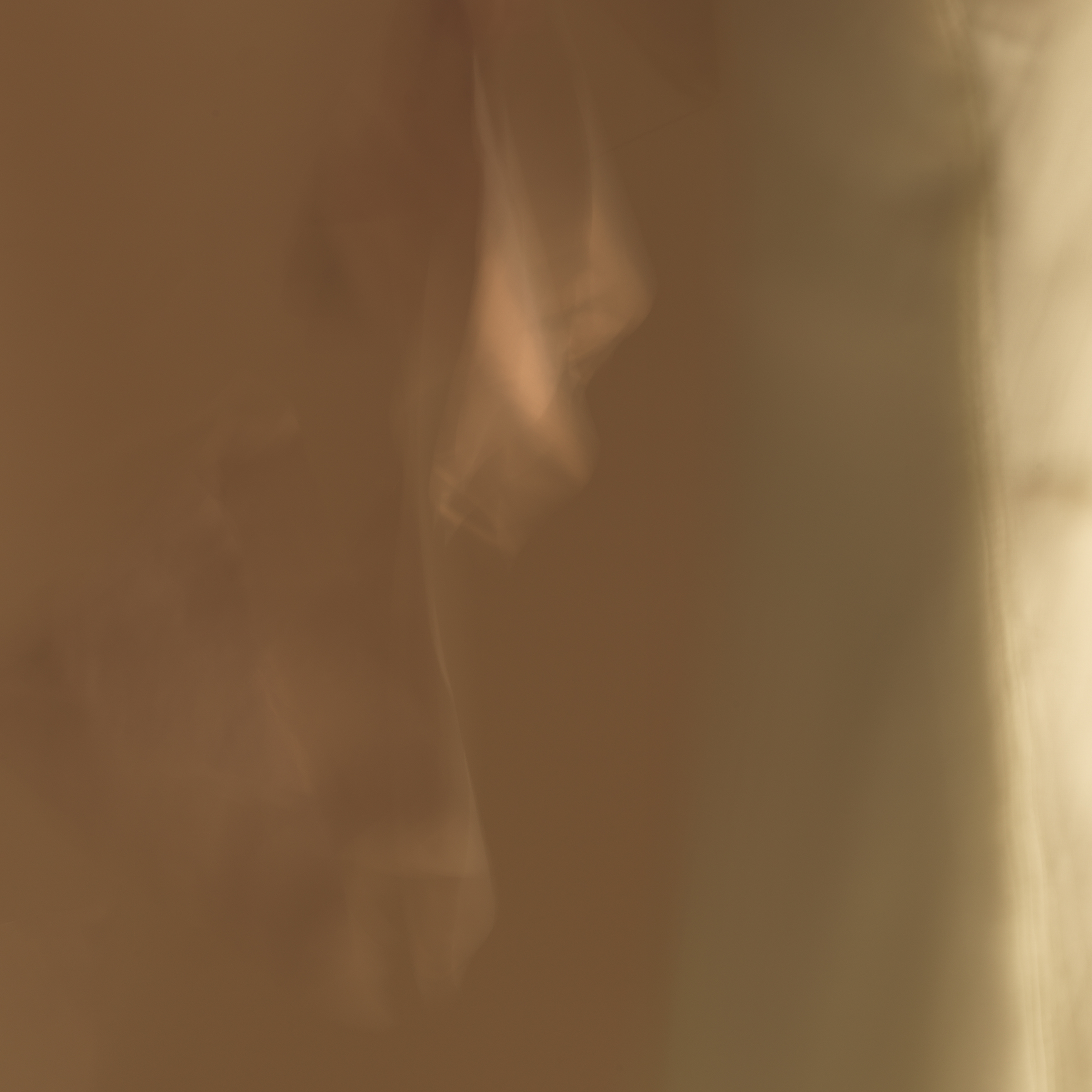 poet's pen, 8, 2014  20 x 20 in. Archival pigment print on Canson paper Edition of 5