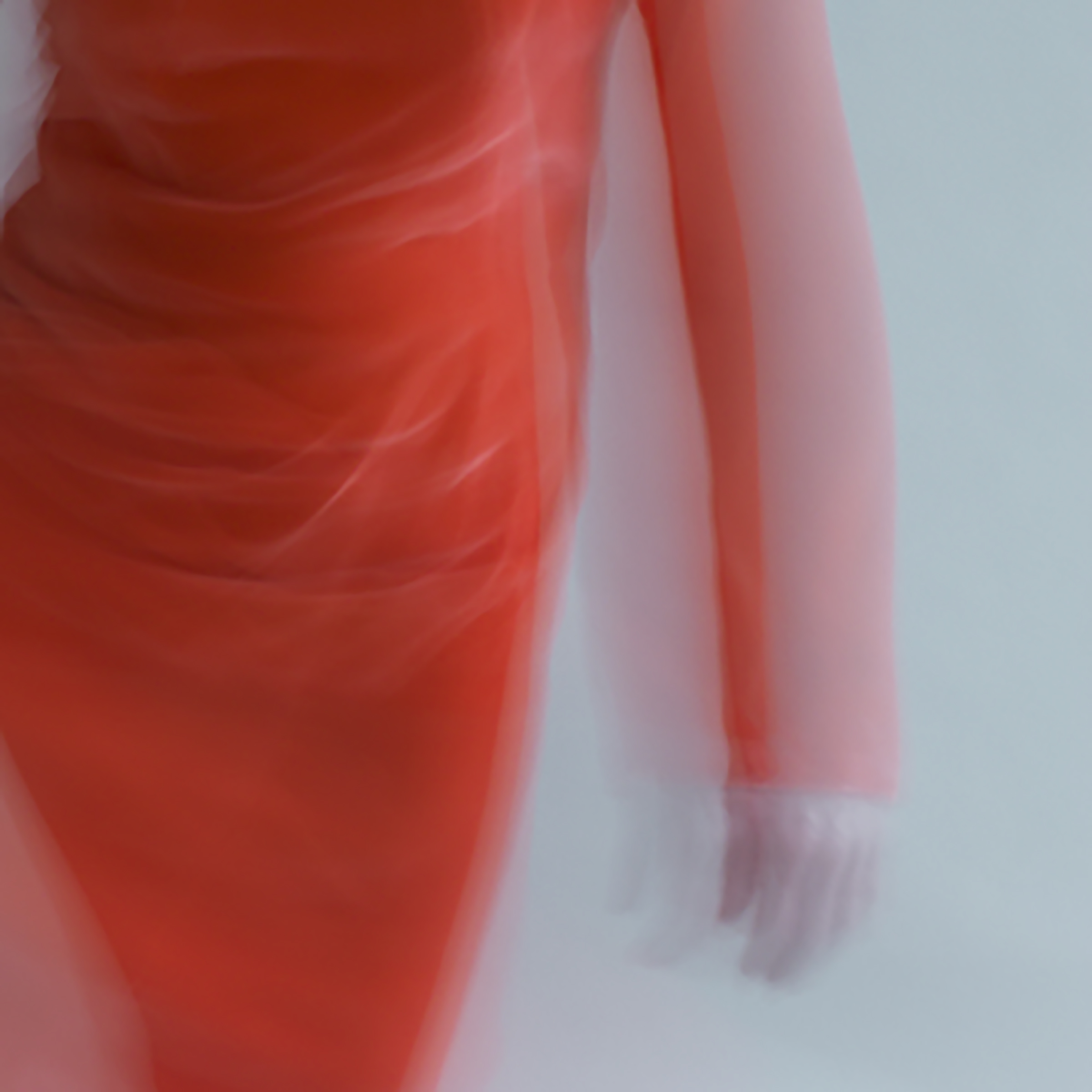 forms of things, 1 , 2014 20 x 20 in. Archival pigment print on Canson paper Edition of 5