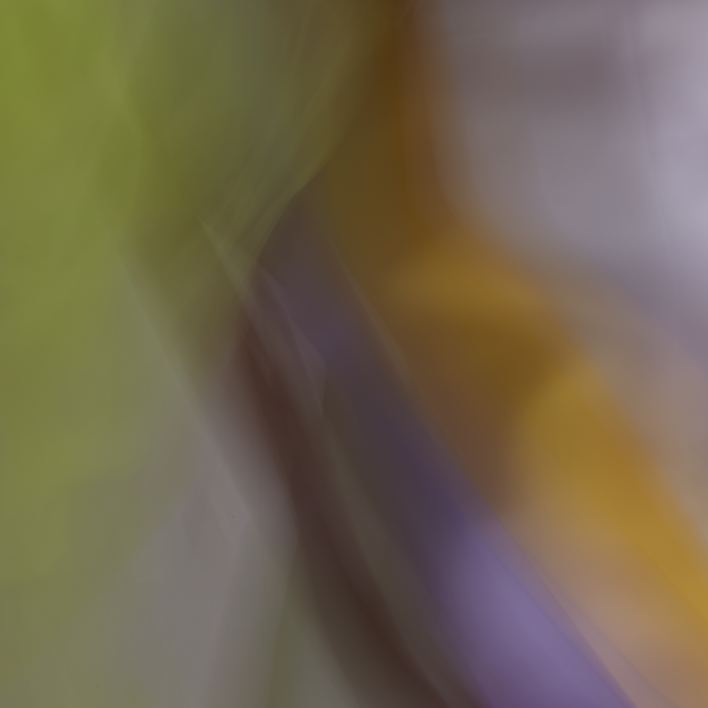 and the poet, 6,    2014   20 x 20 in.   Archival pigment print on Canson paper   Edition of 5