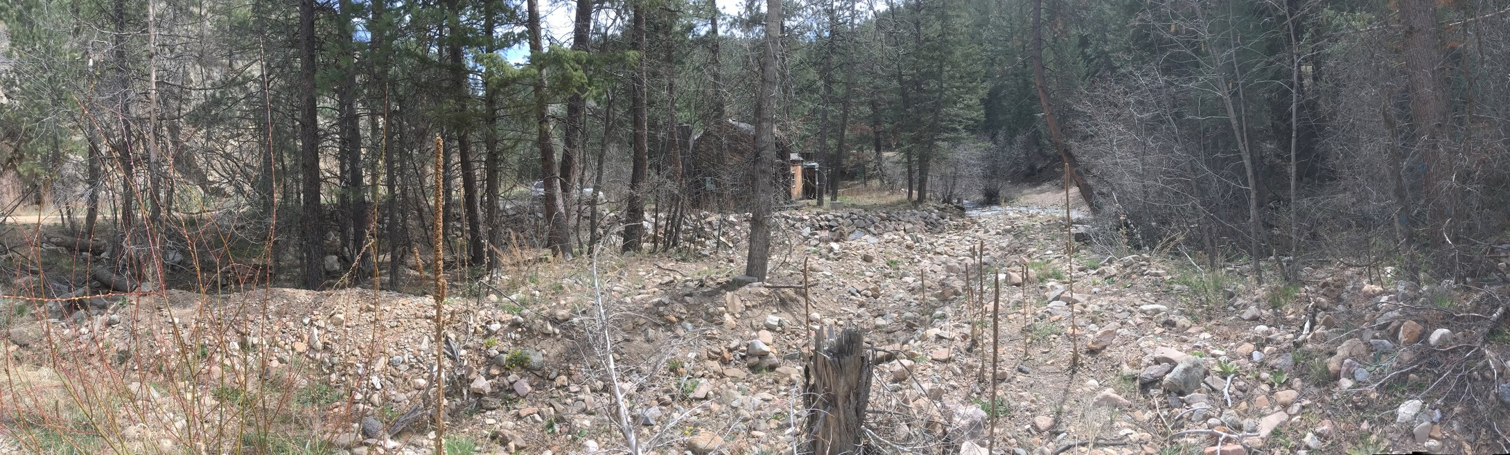 Before Construction: The creek corridor filled and covered with flood deposits upstream of a home. The deposits completely filled the channel and posed a significant hazard to the home (April 2017).
