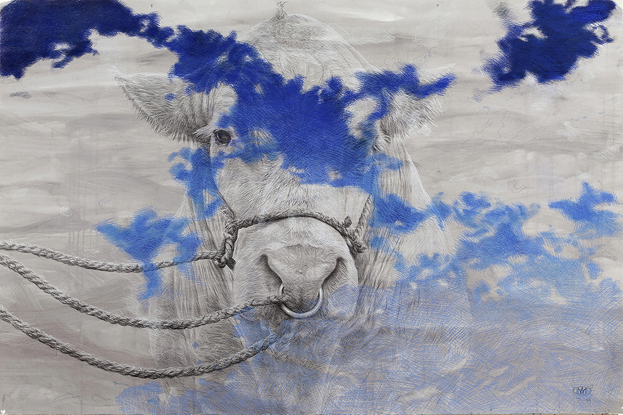 head in the clouds  2012  charcoal & chalk on washed paper  140 x 210 cm