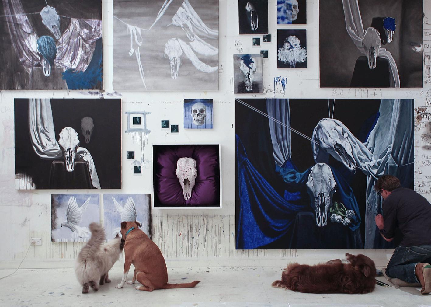 studio image: black&blue
