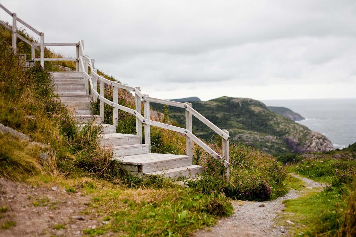15 Newfoundland-3.jpg