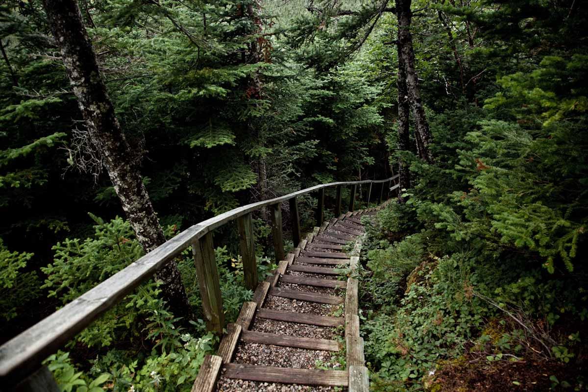 18 Newfoundland-19.jpg