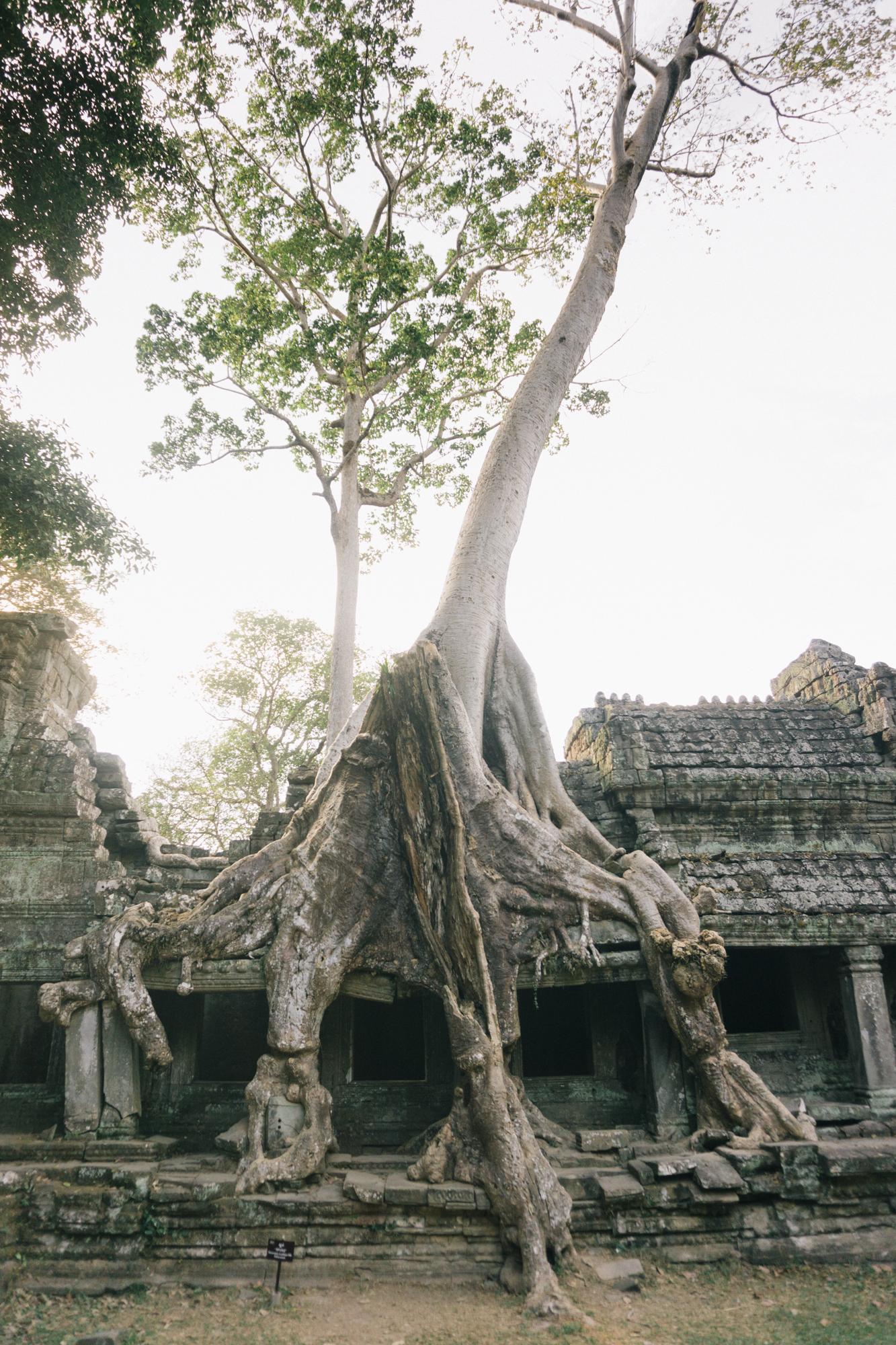 Cambodia_WEB_Preview-115.jpg