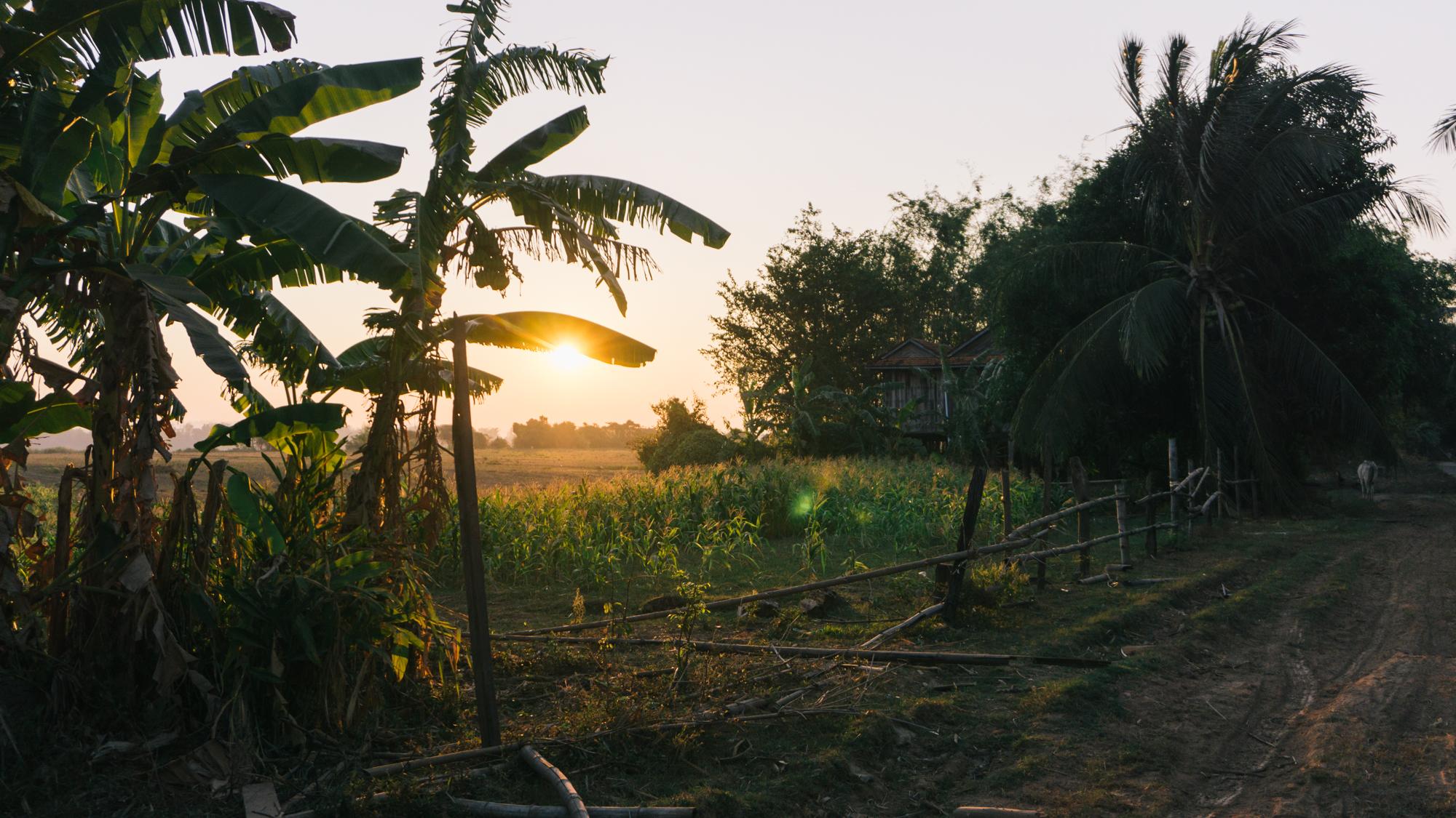 Cambodia_WEB_Preview-195.jpg