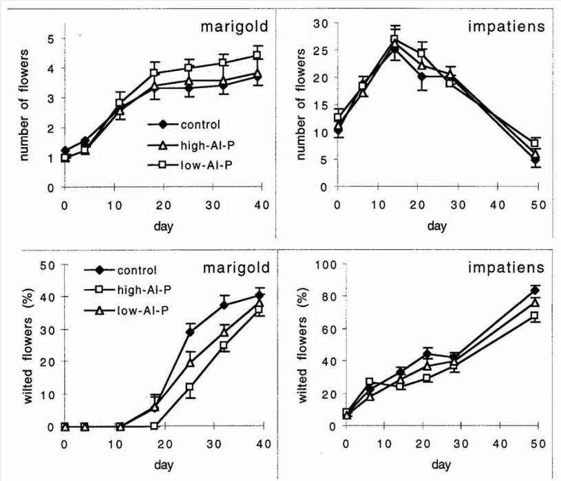Figures 1 and 2 from the bedding plant study linked above, showingincreased flower production and less wilting in plants grown with lessavailable phosphorus.