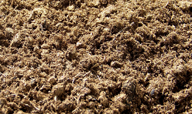 High-quality peat moss: note the large, fibrous-looking pieces. This is Lambert`s AFM soilless mix. Image © Lambert; retrieved from  their website .