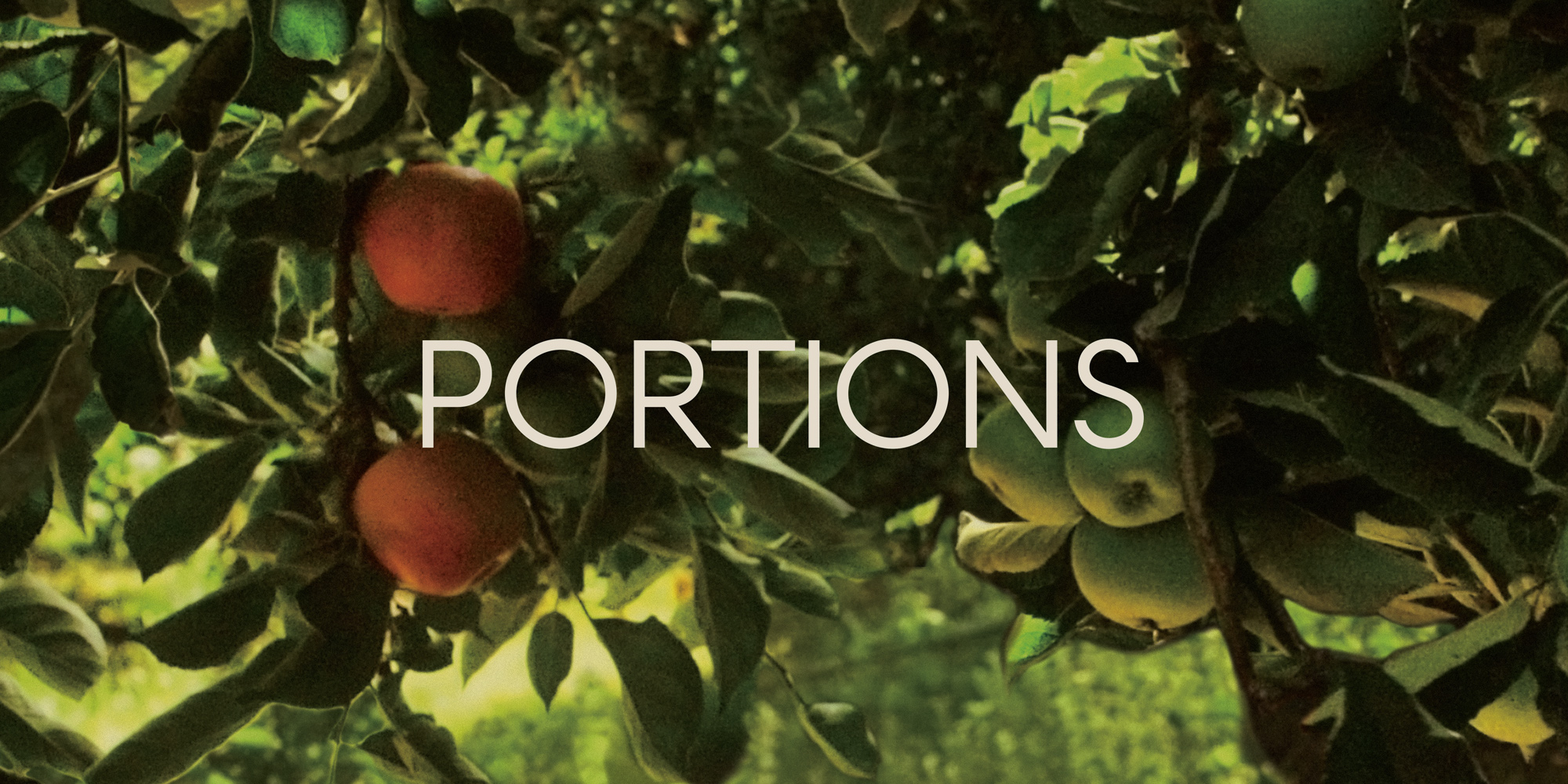 Portions  | Poster Design | EPK | Promotional Materials